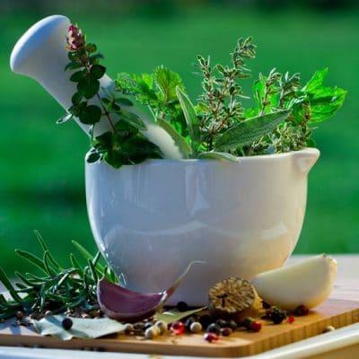 Herboristerie-Plantes médicinales