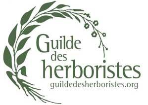 logo guilde des herboristes