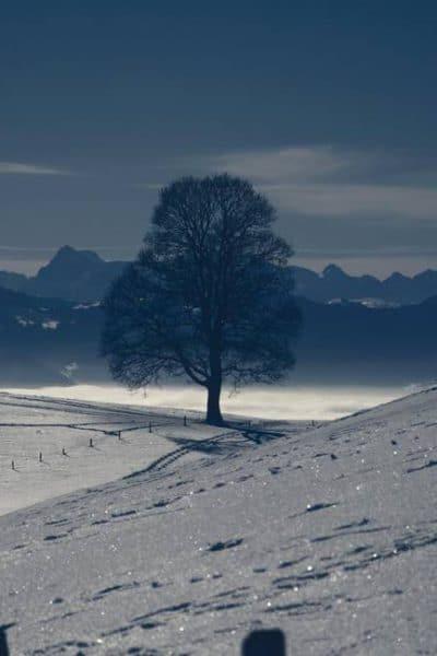Dépression saisonnière et produits naturels